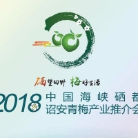 快讯!2018年中国海峡硒都诏安青梅产业推荐会开幕啦!