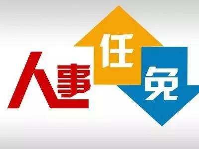 诏安县人民政府任免一批干部,具体名单如下