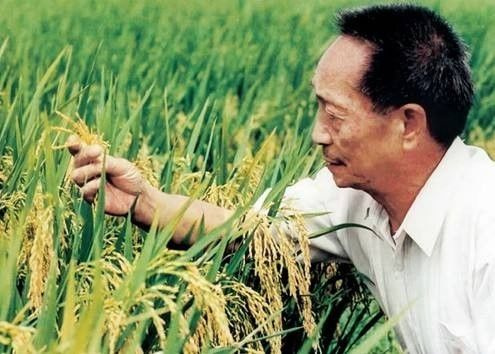 穿35元衣服,喂饱8亿人,这个国外跪求的中国男人,才是我们的真男神